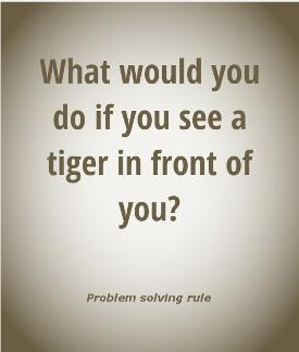 Problem solving rule